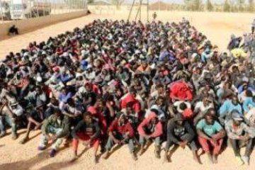 le niger a reduit le nombre de migrants